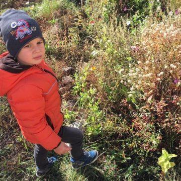 Прогулки в Montessori School